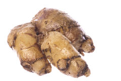 Finger (Cekor) Root Macro Isolated Royalty Free Stock Image