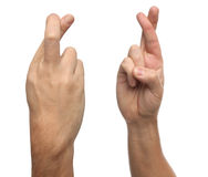 Finger crossed male hand sign. Isolated on white Royalty Free Stock Photography