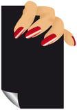 Finger der Frau Stockfoto