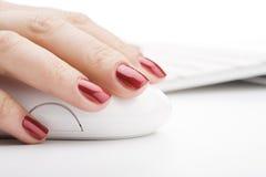 Finger, die eine Maus anhalten lizenzfreie stockbilder