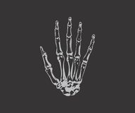 Finger esquelético imagen de archivo libre de regalías