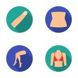 Finger, female feet, female, bust. Part of the body set collection icons in flat style vector symbol stock illustration Royalty Free Stock Photography