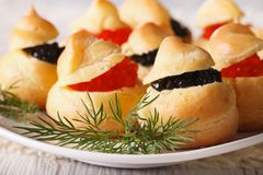 Finger food: profiteroles stuffed with red and black caviar Royalty Free Stock Photos