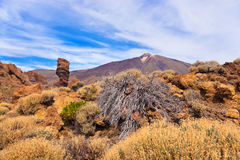 Finger Of God rock at volcano Teide in Tenerife island - Canary Royalty Free Stock Photography