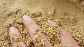 Finger im Sand Stockbild