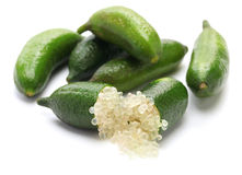Finger lime stock image