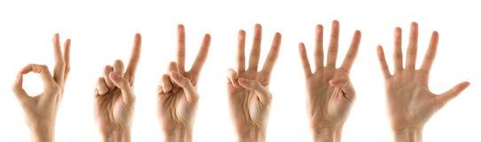 Finger mit Zahlen Stockbild