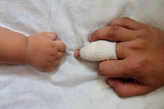 Finger must have wound with gauze bandage and son hand. Close up of finger must have wound with gauze bandage and son hand Stock Image