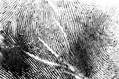 Finger print 1. Ink fingerprint (scarred finger Royalty Free Stock Image