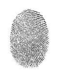 Finger print. Clear view of finger print over white background royalty free stock images