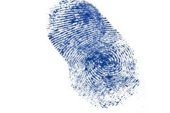 Finger print. Blue finger print on white Stock Image