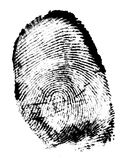Finger print. Isolated on the white background Royalty Free Stock Images
