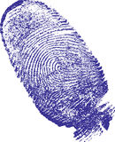 Finger-print. Man, done on the white sheet of paper a blue paint Stock Images