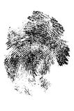 Finger print in close up Stock Photography
