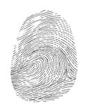 Finger print. Realistic fingerprint isolated on a white background. Fingerprint icon. Black fingerprint. Vector fingerprint Royalty Free Stock Image