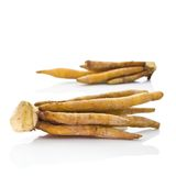 Finger Root Stock Photo