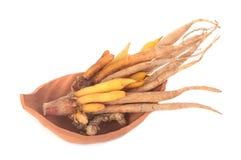 Finger root , Thai herb on white Stock Image