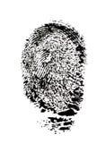 Fingerabdruck. stockbild