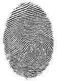 Fingerabdruck. stockbilder