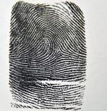 fingeravtryck Royaltyfri Fotografi