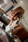 Fingerboard bass closeup Royalty Free Stock Photos