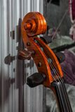 Fingerboard of cello in grey baroque interior royalty free stock photo