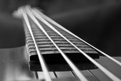 Fingerboard, Closeup, Black And White Royalty Free Stock Images