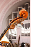 Fingerboard contrabass. Standing on the stage closeup Stock Image
