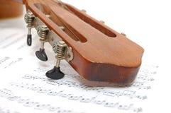 fingerboardgitarrleafen bemärker gammalt under royaltyfria bilder
