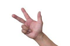Fingeres de Thee foto de archivo
