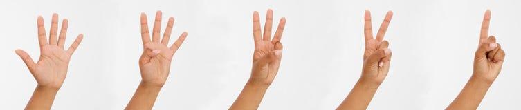 Fingeres femeninos afroamericanos de la demostración de la mano Los puntos del finger se cierran para arriba en el fondo blanco C imagen de archivo