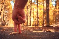 Fingeres que caminan en el parque del otoño Foto de archivo