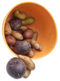 Fingerling Artisan Potatoes Stock Photo