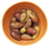 Fingerling Artisan Potatoes Royalty Free Stock Photos