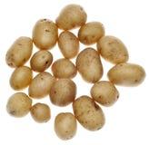 Fingerling Potatoes Royalty Free Stock Image