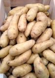 Fingerling Potatoes Stock Photos