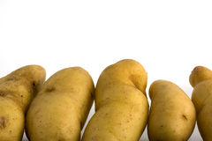 Fingerling potatos Royalty Free Stock Image