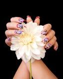 Fingernägel und Blume Lizenzfreie Stockfotografie