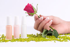 Fingernail cosmetic Stock Photography