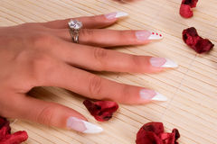 Fingernail cosmetic. Woman hand with beautiful colored fingernails. Cosmetic and manicure Stock Image