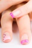 Fingernails. Coloured pink female fingernails on white ground Royalty Free Stock Images