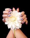 Fingernails and flower. Two female hands with beautiful fingernails and a white flower, on a black background royalty free stock photography