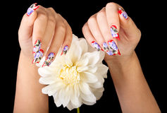 Fingernails and flower. Two female hands with beautiful fingernails and a white flower, on a black background stock photo