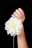 Fingernails and flower. Female hand with beautiful fingernails and a white flower, on a black background stock images