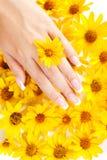 Fingernails och blommor arkivbild