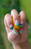 Fingernails of a woman with physalis Royalty Free Stock Image