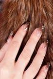 fingerpäls Royaltyfria Bilder