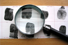 Fingerprins identification. In forensic lab Royalty Free Stock Photo