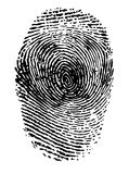 Fingerprint. Black on white vector illustration Royalty Free Stock Photo