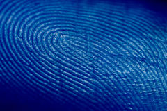 Free Fingerprint Royalty Free Stock Images - 12281229